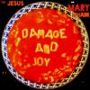 the jesus and mary chain - damage and joy - 2017